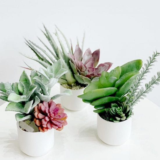 Faux Floral Bouquet Succulent